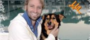 """""""Confido nel cuore"""" il calendario 2011 per i cani abbandonati"""