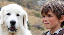 "Il cinema aiuta il randagismo ""Belle & Sebastien"""