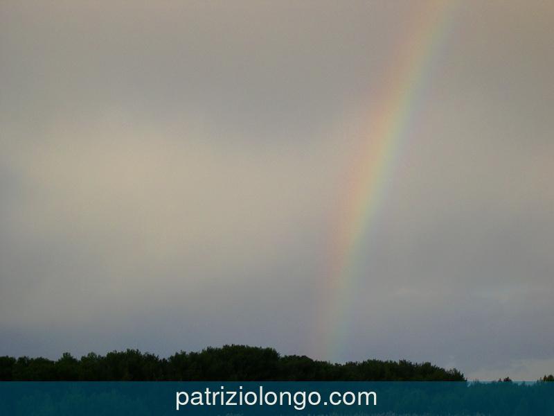 arcobaleno-pineta-01-08.jpg