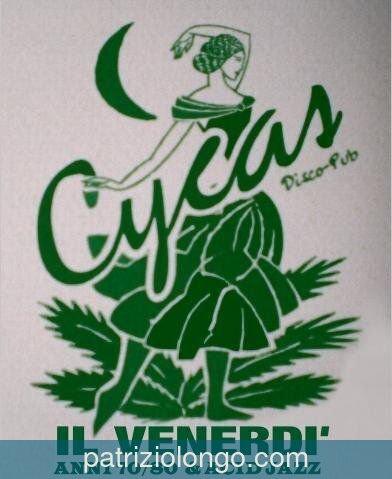 Cycas 1993
